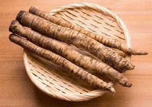 Burdock Root Health Benefit Introduction