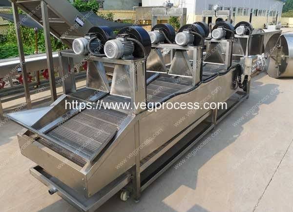 Automatic-Air-Blow-Type-Vegetable-Water-Dehydrator-Machine