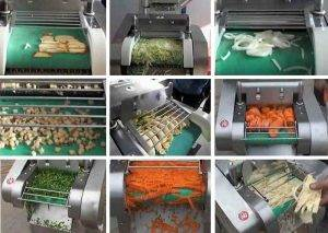 Multi-Functional-Vegetable-Cutting-Machine-Application