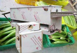 Automatic Asparagus Lettuce Knife Peeling Machine