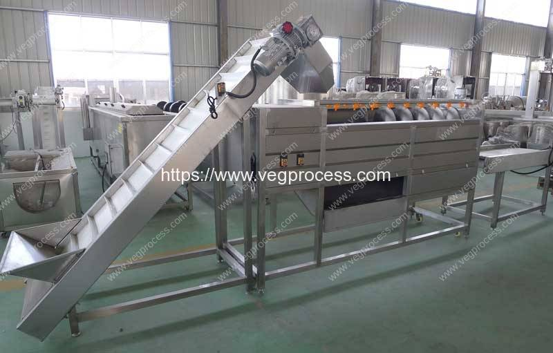 Automatic-Screw-Type-Root-Vegetable-Washing-Peeling-Machine-with-Feeding-Elevator