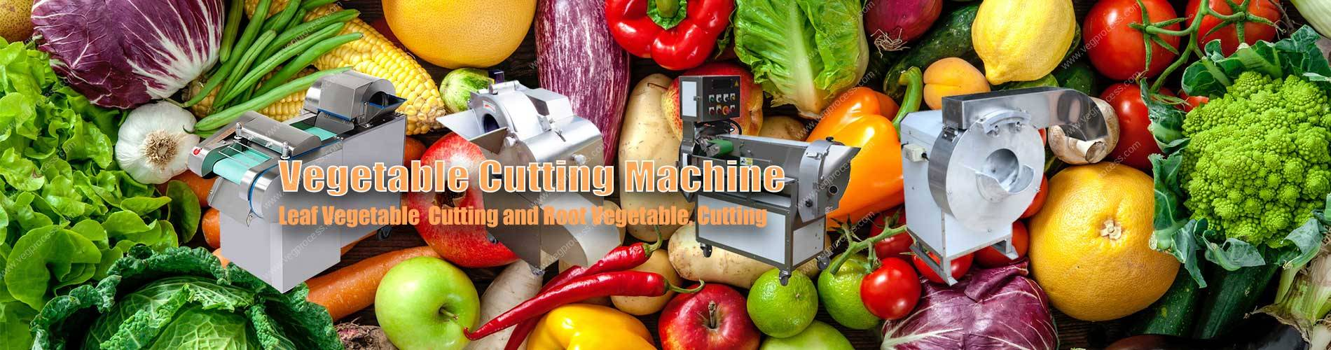 Banner03-Vegetable-Cutting-Machine-Manufacture