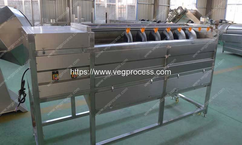 Screw-Feeding-Type-Root-Vegetable-Washing-Peeling-Machine-Manufacturer