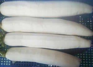 White-Radish-Knife-Peeling-Machine-Product