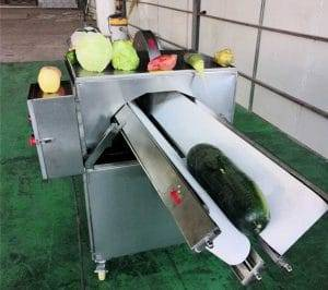 Automatic Vegetable Half Cutting Machine