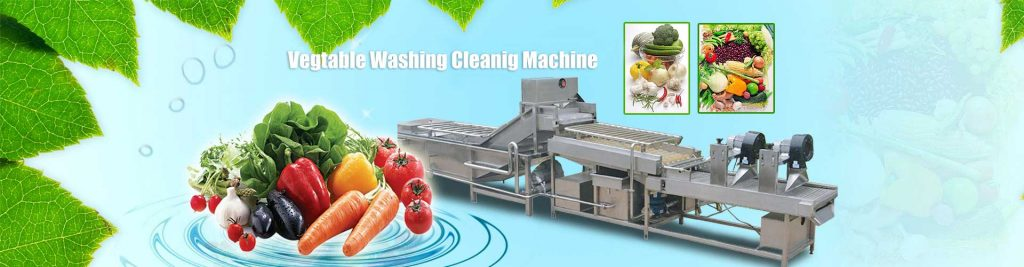 Banner01-Vegetable-Washing-Cleaning-Line