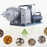 Vacuum Vegetable Freeze Dryer Machine